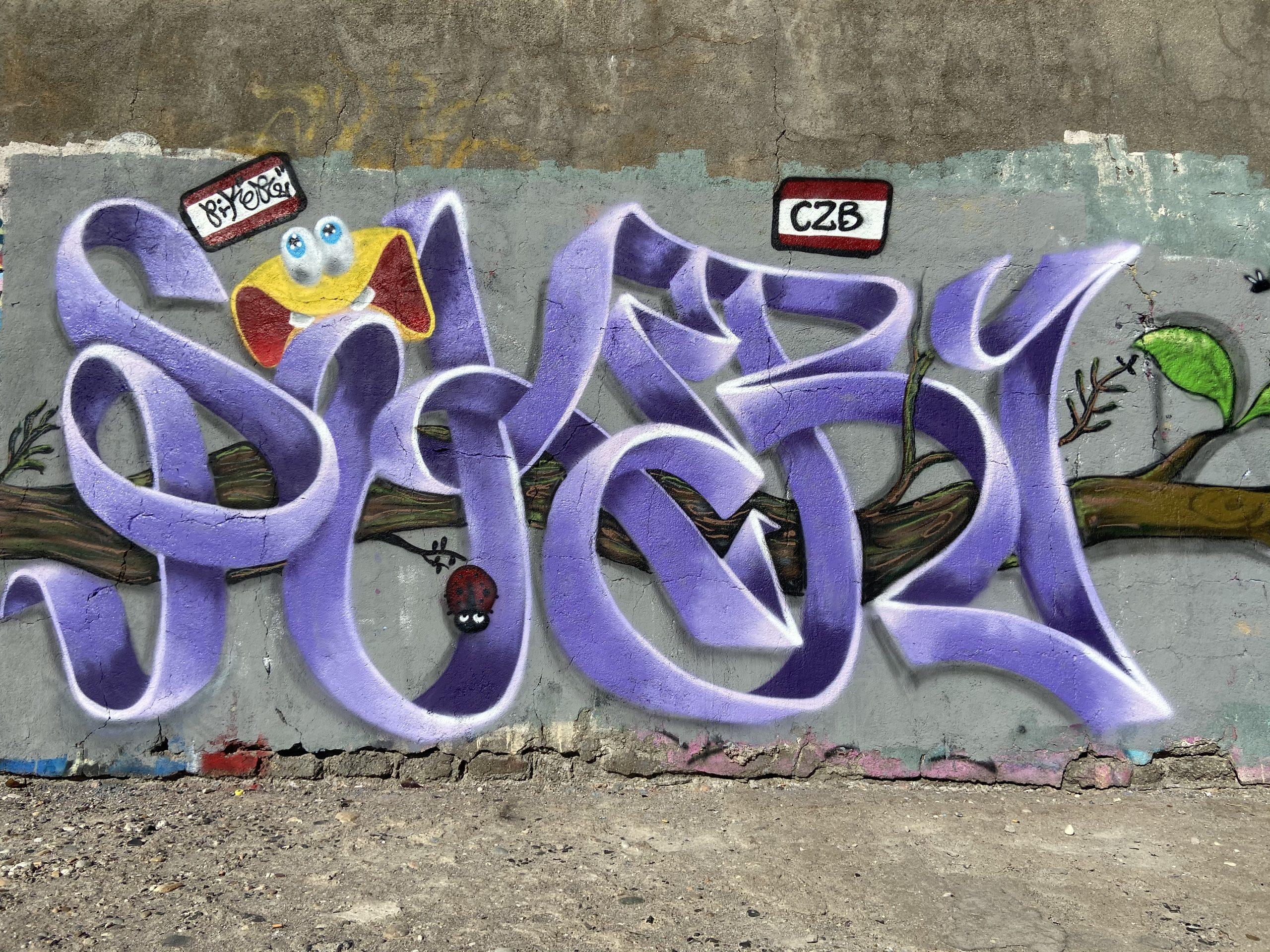 graffiti piker czb
